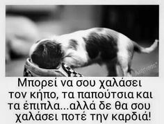 Αλλά δεν θα σου χαλάσει ΠΟΤΕ την καρδια Dog Quotes, Best Quotes, Funny Quotes, Life Quotes, Happy Animals, Cute Funny Animals, I Love Dogs, Cute Dogs, Greek Words