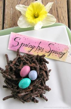 Who needs a new Spring recipe that is yummy unique and simple? This Spring Chocolate Nest Dessert is just that with a secret healthy ingredient! Easter Cupcakes, Easter Cookies, Easter Treats, Easter Food, Easter Dinner, Spring Recipes, Easter Recipes, Holiday Recipes, Family Recipes