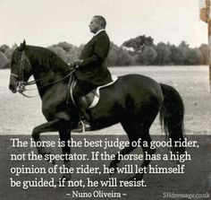 Judge of a horse: Nuno Olivera Equestrian quote advice || Olivera is a well-known classical dressage teacher and advocate | Look at the curb reins!!