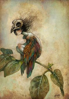 Soul of a bird                                                                   by Caroline Jamhour