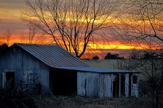 Country Sunrise   Artist  Deena Stoddard   Medium  Photograph - Photograph    Description  Sunrise behind an abandoned outbuilding captured in rural southwest Missouri. #country #barns