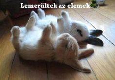Itt a Húsvét vége, az elemek is lemerültek : )