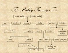 The Malfoy family tree. Why is Hermione on there Harry Potter Family Tree, Harry Potter Theme, Harry Potter World, Draco And Hermione, Harry Potter Draco Malfoy, Tree Tattoo Men, Hogwarts Letter, Dramione, Slytherin