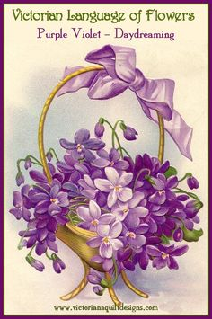 The Language of Flowers - Purple Violet = Daydreaming
