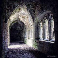 Medieval cloister, Adare, Co Limerick. It is located in the Augustinian Friary   Instagram photo by @irish_archaeology