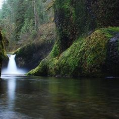 How to get to Punchbowl Falls 74180 NE Eagle Creek Loop Bonneville, OR 97014
