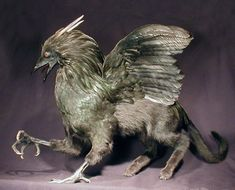 Griffin comprised of taxidermied real animal parts, ala Frankenstein's monster, by Sarina Brewer. Disturbing, yet awesome.