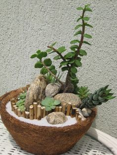 Use bamboo, white sand, and succulents to create a zen potted display