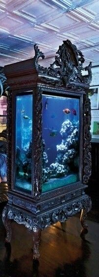 Going to get some fishies next to complete my pet family! Maybe not in a tank this amazing though!