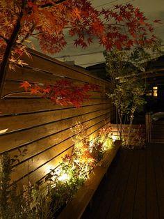 ワンちゃんに優しい庭 ティーズガーデンスクエア 愛知県Y様邸 Spectacular garden lighting by lighting professionals. Enjoy a dramatic, romantic, even mysterious scene comparing to a day time.