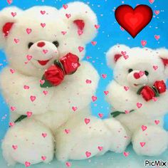 Teddy Photos, Teddy Bear Pictures, I Love U Gif, Bisous Gif, Hugs And Kisses Quotes, Teddy Bear Quotes, Teddy Beer, Happy Birthday Greetings Friends, Love Wallpapers Romantic