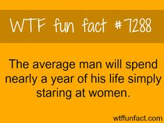 Men spend a year of their lives starting at women - WTF fun fact Wtf Fun Facts, Funny Facts, Funny Quotes, Crazy Facts, Random Facts, True Facts, Random Stuff, Men Are Pigs, Simply Life
