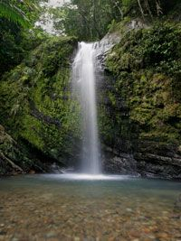El Yunque, Rio Grande, Puerto Rico