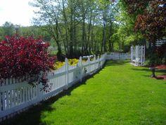 The backyard of the Main Farm house. The creek runs behind the fence Horse Farms, Farm House, Stepping Stones, Kentucky, Fence, Maine, Sidewalk, Backyard, Horses