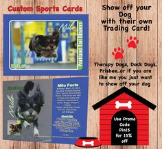 "Trading cards for your pets or to most of us ""family member"" www.customsportscards.com"