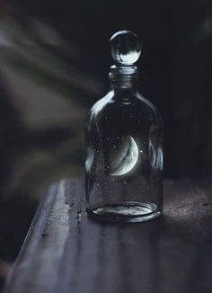 If I had the moon in a bottle the first thing that I'd like to do...