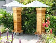 Amazing Feats of Urban Beekeeping