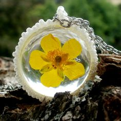 buttercup terrarium necklace real plant jewelry by SparkleCingari