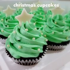 christmas baking, idea, christmas holidays, christma tree, holiday cupcakes, tree cupcak, christmas trees, christmas cupcakes, christma cupcak