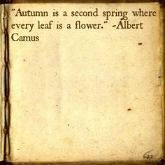 """""""Autumn is the second spring where every leaf is a flower."""" - Albert Camus"""