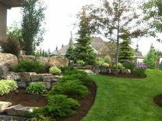 Evergreen boulder landscape