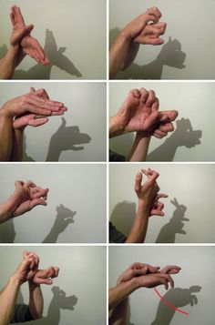 ombre chinoise avec les mains