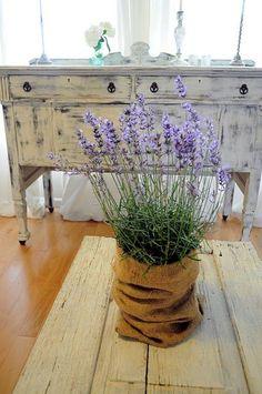 Love me some lavender !