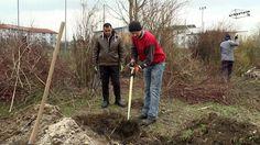 Urban Gardening start!  Workshop #1: Vegetable patch.