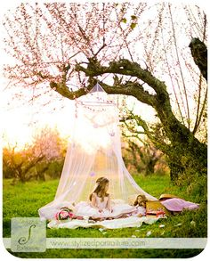 love photo of a budding orchard in the background and the sheer gauze as a prop to add a whimsical touch to a spring/summer day photo shoot