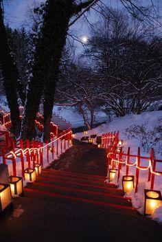 Christmas Walk! A free family event in December. Dow Gardens, Midland, MI