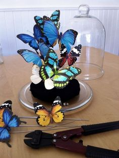 Butterfly centerpiece