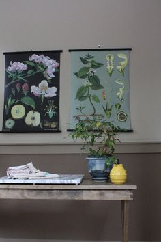 Paint colors that match this Apartment Therapy photo: SW 6461 Isle of Pines, SW 9128 Green Onyx, SW 6535 Solitude, SW 6991 Black Magic, SW 6215 Rocky River