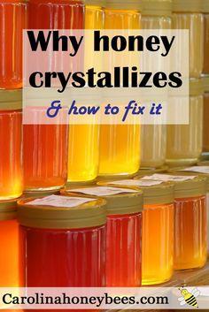 Why does honey crystallize and how to fix it.  Dont throw away good honey .  Carolina Honeybees Farm