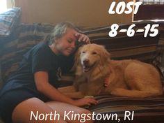 "#LOSTdog 8-6-15 ""Daisy"" #NorthKingstown #RI Female LOCATION: Rt 2 & Stony Lane 401-575-1028 https://www.facebook.com/story.php?story_fbid=10153094263137898&id=982330985132828"