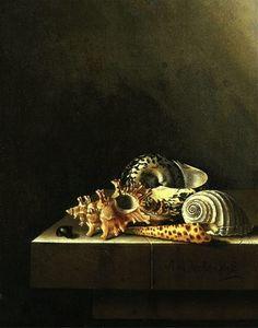 Adriaen Coorte (1660-1707) — Still Life with Shells  (550x700)
