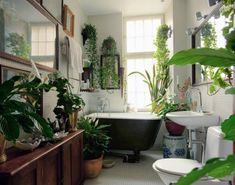 Love plants in the bathroom, though this might be just one or two too many. :) Wish my tiny bathroom could accommodate more greenery - and a credenza!