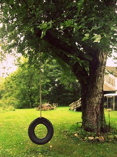 you must have a tire swing on the farm.Wish I had a tree in my yard to hang a tire in