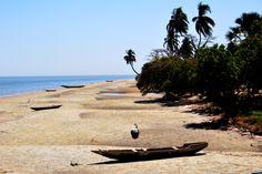 Des paysages à perte de vue. Laissez-vous charmer par la découverte de la Casamance...