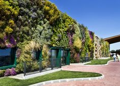 Vertical gardens:I just saw this one near Milan, Italy. I truly believe they are an awesome solution for high density vertical cities. Infatuation <3<3<3