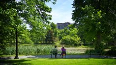 Looking With Chris & Stephanie At the Griffin's pond, at the Halifax Public Gardens. I saw Chris & Stephanie sitting on a bench, looking at the beautiful view front of them while having their lunch. As you know, a great subject for my blog but ... #LookingWith #Halifax #NovaScotia #Canada  http://lookingwith.com/home/photo/255