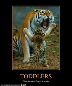 12 Hilarious Baby and Toddler Memes!