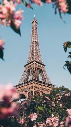 Paris, the most beautiful place in the world ? - Lady Womans Paris, the most beautiful place in the world 🌍 Cute Wallpaper Backgrounds, Pretty Wallpapers, Nature Wallpaper, France Wallpaper, Flower Wallpaper, Cool Wallpapers For Iphone, Wallpaper Quotes, World Wallpaper, Beautiful Paris