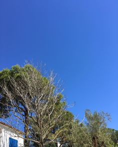 #Spain #summer #costabrava #calella #bluesky #off