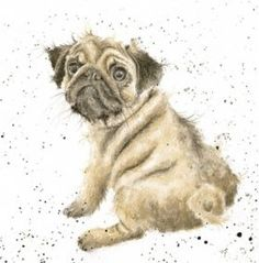CS063 - Pug Love | Wrendale Designs
