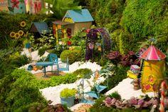 Studio M by Magnet Works' miniature garden