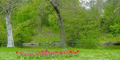 Propuesta para disfrutar en Dinamarca - http://www.absolutdinamarca.com/propuesta-disfrutar-dinamarca/