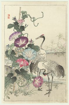 Kono Bairei (1844 - 1895) Japanese Woodblock Print Cranes and Morning Glories