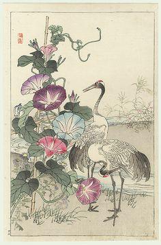 Kono Bairei (1844 - 1895) Japanese Woodblock Print Cranes and Morning Glories