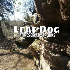 Leaf Dog remixes make it look easy Leaves, Album, Music, Dogs, Nature, Easy, Movie Posters, Musica, Musik