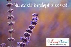 Galerie foto   .:Jurnal Spiritual:.